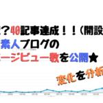 40記事達成!ド素人ブログのページビュー数はどうなった?!